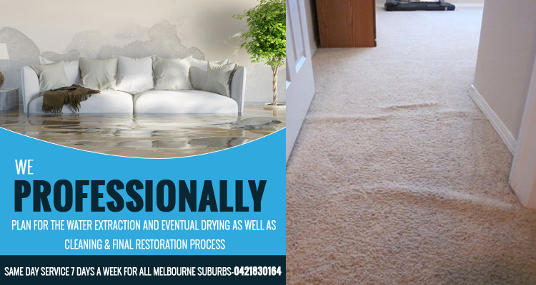 carpet-flood-water-damage-restoration-Mount Cottrell